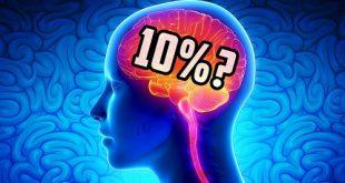chúng ta chỉ sử dụng 10 não bộ